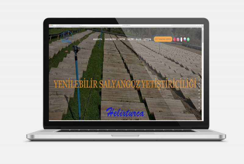 Office701 | Helixturca | Food Manufacturing Website