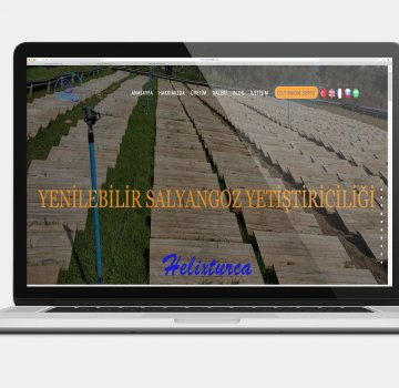 Office701 | Helixturca Web Sİtesi