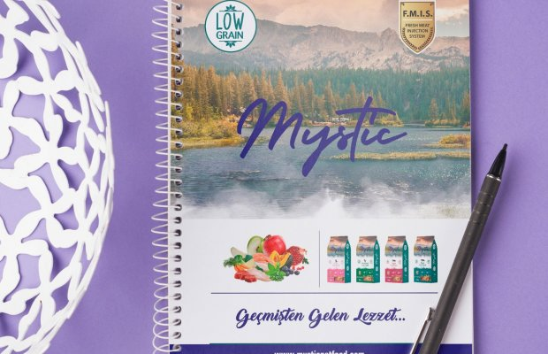 Office701 | Mystic | Corporate Diary Design