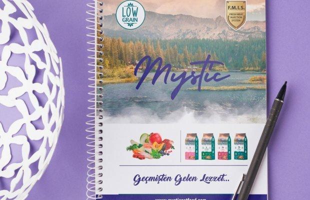 Office701 | Mystic | Notebook Design