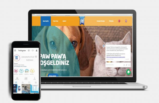 Office701 | Pawpaw | Pet Food Manufacturing Website
