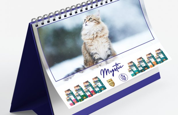 Office701 | Mysticpetfood | Calendar Design